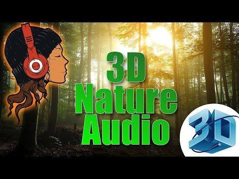 Use Headphones & Close Your Eyes | Peaceful Nature HD 3D Audio | Ro-Artz
