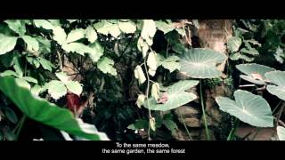Fjärilspojken / The Butterfly Boy - Book Trailer