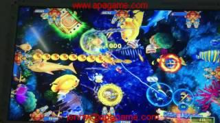 tiger strike plus king of tiger lion strike fishing game machine casino slot machine