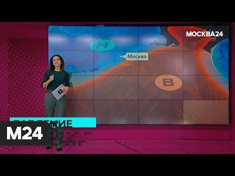 """""""Погода"""": температура воздуха в столице превышает климатическую норму - Москва 24"""
