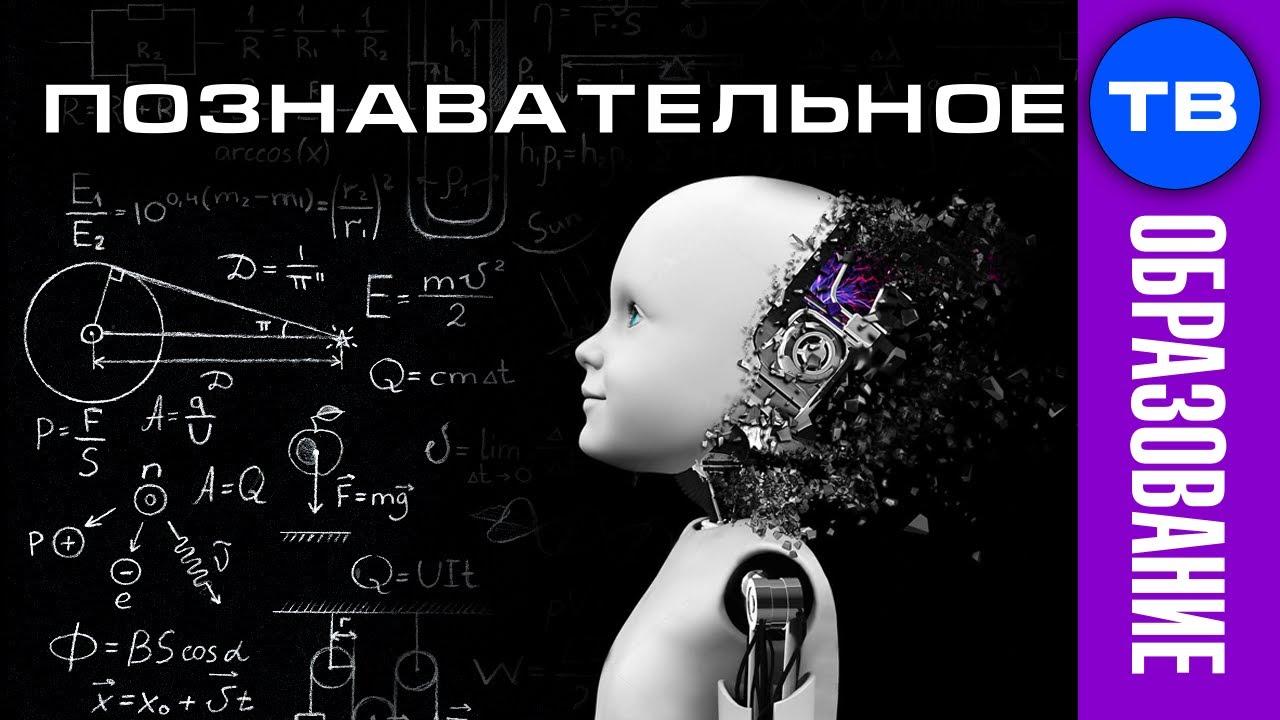 Школа делает из детей ТУПЫХ биороботов (Владимир Базарный)