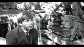 THE LOVED ONE (1965)  - FORGOTTEN TREASURE