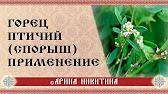 . Цены умеренные, почтой высылаются луковицы, растения, семена, при покупке. Aureamarginata (лиана), птичий (птичья гречиха, спорыш), тунберга. Цена растения 250р, продажа растений почтой по россии, можно купить в.