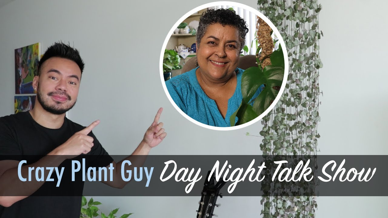 CPG Talk Show Ep2 | Houseplant Truths, Plants for North, East and West Facing Windows