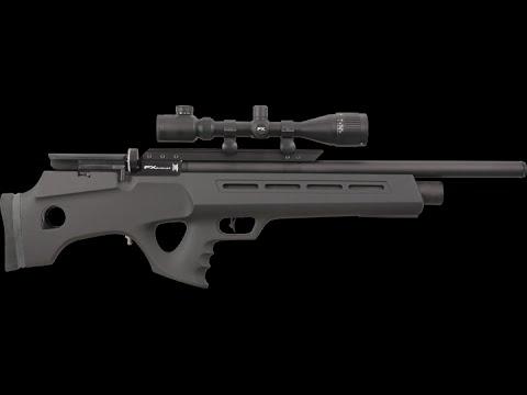 Carabine 22 long rifle semi automatique