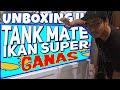 Unboxing Dan Setting Tank Ikan Predator  Mp3 - Mp4 Download