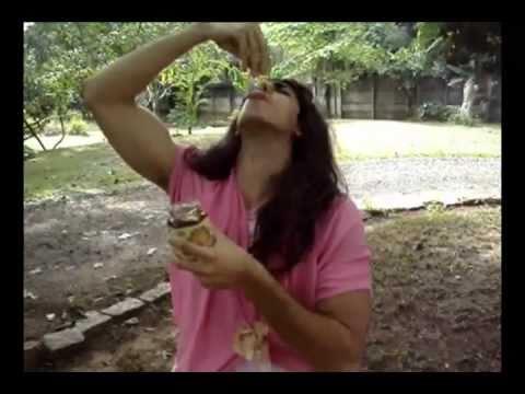 HUMOR: Damares - Sabor de Mel