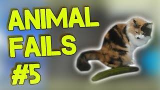 ANIMAL FAILS BEST COMPILATION  #5