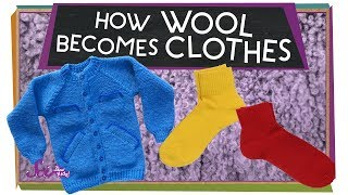 Wonderful Wool!
