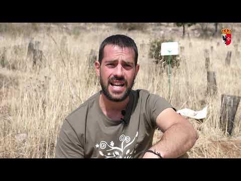 """Tierra De Yebenosos - Programa 2 """"Asociación Amigos Por Naturaleza"""""""