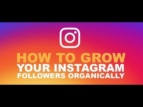 Get 1000 Instagram Followers in one Hour | 1M followers Using Famedgram