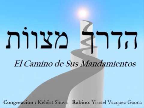 613 Commandments pdf