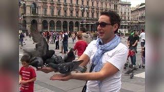 Съемочная группа «Руссо Туристо» покормила голубей в центре Милана