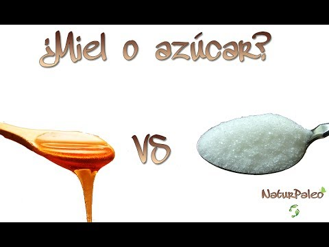 ¿Miel o azúcar?