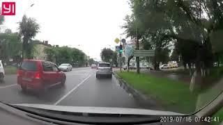 Амурчане встали на сторону таксиста, сбившего собак