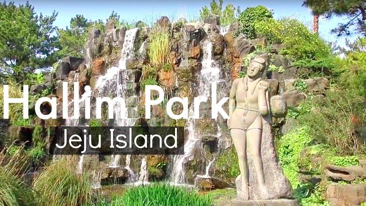 نتيجة بحث الصور عن hallim park