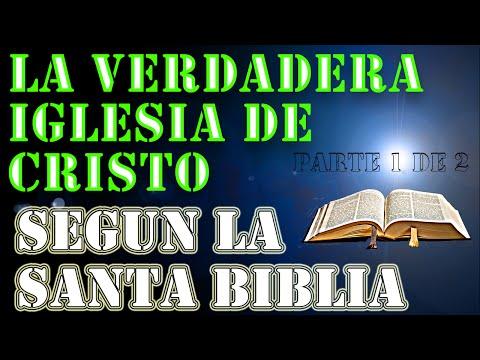 La Verdadera Iglesia de Cristo 1-2 (Pbro. Luis Toro) [[Parte 1,2,3,4]]