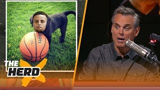 Steph Curry is the Teflon puppy of the NBA   THE HERD