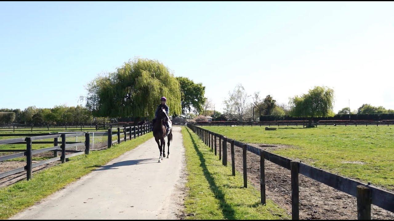 RIVERROCK BACKSTORY | REDWOOD X WANDANE