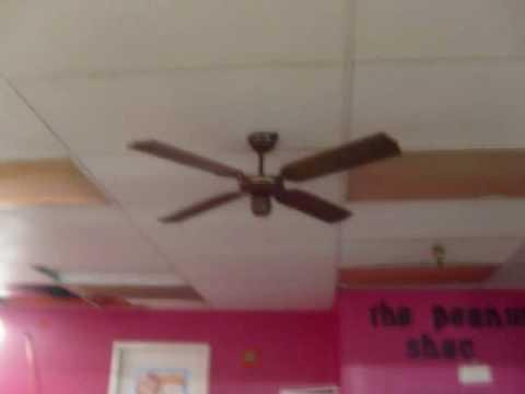 Poor Old Ceiling Fans