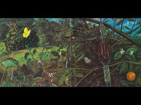 Dragonfly - s/t (1968) {Full Album}