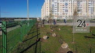 В Нижнекамске в школе №36 прошла акция «Зеленая волна»