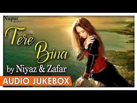 TERE BINA By Niyaz & Zafar | Evergreen Hindi Sad Songs | Audio Jukebox | Nupur Audio