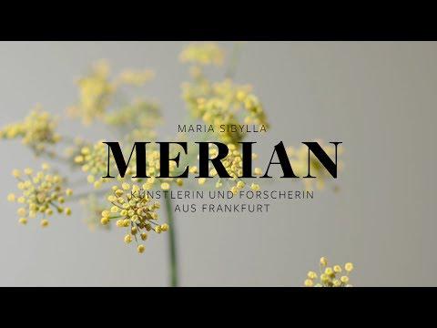 Maria Sibylla Merian - BOTANICAL ART & ARTISTS