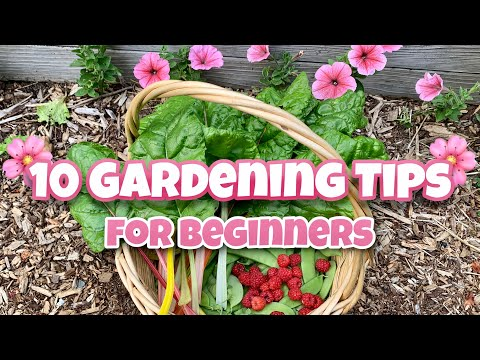 10 Beginner Gardening Tips - Gardening for Beginners, Garden #Stayhome #Withme
