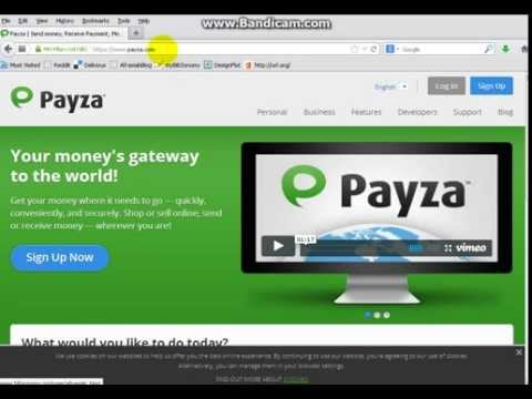 Payza Reviews: Overview, Pricing and Features