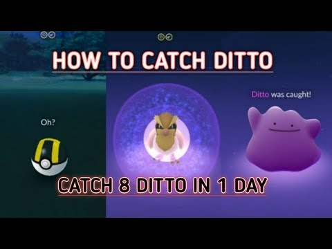 How To Catch Ditto In Pokemon Go || How To Find Ditto || Catch Ditto In Pokemon Go || #Ditto POGO ||