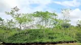 Nadira Begum Rangpur Region Bangla Folk Song Oki Ekbar Aasia