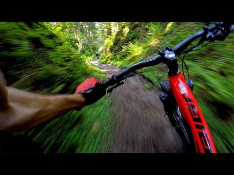 World Cup XC Is No Joke | Mountain Biking Dalby Forest