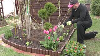 GARDEN (79) - Flower arrangements - Gabion and flower bed. - Kwiaty w gabionie.