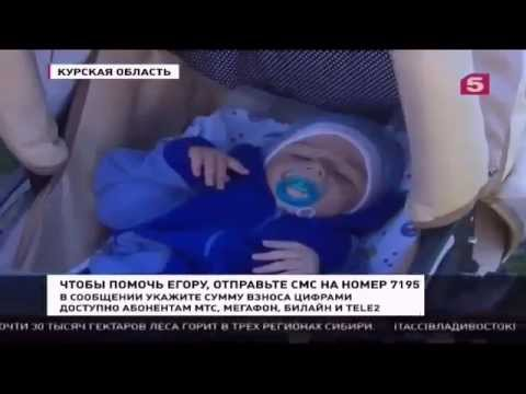 Новости часа сегодня в россии и украине