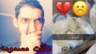 بنت ماتت كلبتها بالسم 💔 شوفوا ردة فعلها 😫