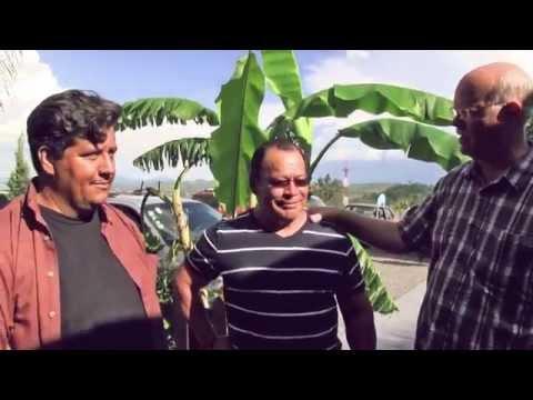Pastor's Vision for TUMI in Guadalajara, Mexico