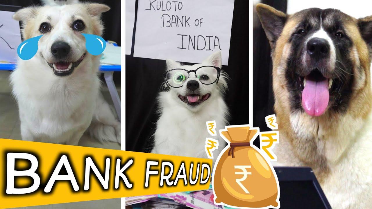 KBI Bank Ne Kiya FRAUD RIOBABY Ko | FUNNY TALKING DOG EPISODE - 10 #Rioandkulotobaby