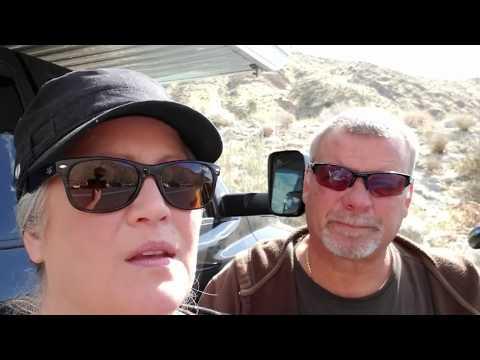 Bighorn Sheep, Whitewater Preserves  Full-Time RV Living And Travel Vlog