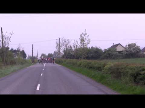Horse Joins Bikers in Race