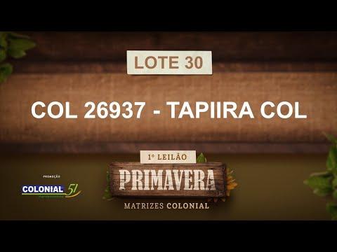 LOTE 30   COL 26937