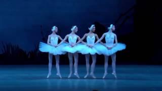 """П. И. Чайковский. Балет """"Лебединое озеро"""". Танец маленьких лебедей"""