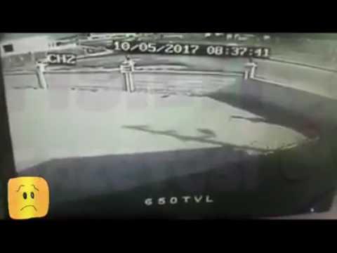 video 1494429774