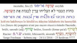 Phrase241116