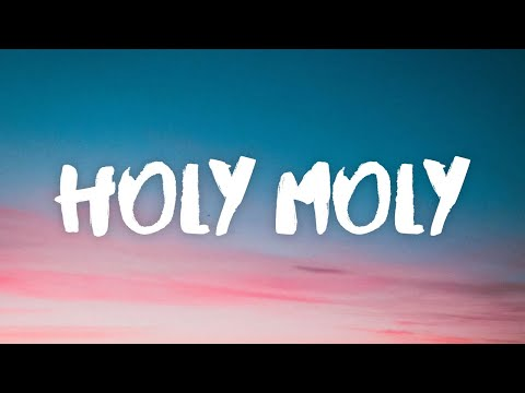 "Blueface ‒ Holy Moly (Lyrics) ft. NLE Choppa ""holy moly donut shop"""