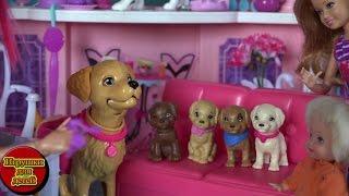 Сериал куклы Барби Жизнь в доме мечты, Таффи родила щенят, Барби и Щенки Мультфильм для детей