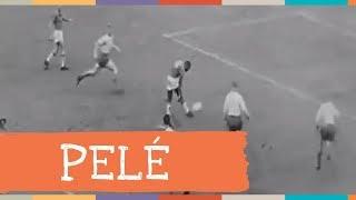 Palavra Cantada   Pelé