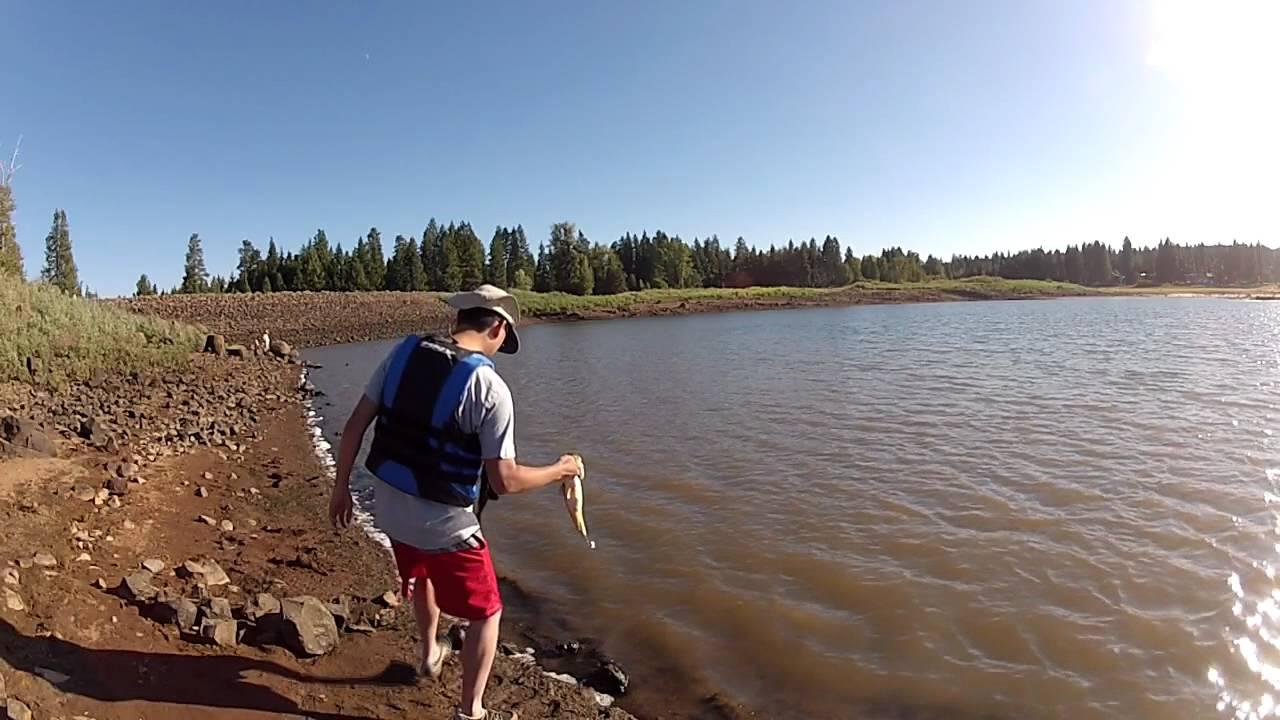 Gopro oregon bass fishing wacky rigged senko worm youtube for Bass fishing oregon