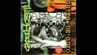 Opa Hostil-Grito de Odio Split(1999)