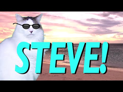 HAPPY BIRTHDAY STEVE! - EPIC CAT Happy Birthday Song